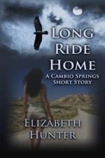 Libro Long ride home De Elizabeth Hunter